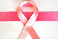 Ανήμερα της Παγκόσμιας Ημέρας κατά του καρκίνου του μαστού πέθανε η Φώφη Γεννηματά