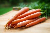 Ψητά fingers καρότου με σως γιαουρτιού