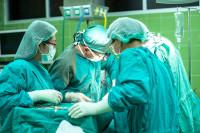 Η πρώτη πετυχημένη μεταμόσχευση νεφρού γουρουνιού σε άνθρωπο είναι γεγονός