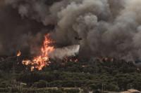 Πυρκαγιά στη Βαρυπόμπη: Οι συστάσεις των Πνευμονολόγων Ελλάδας προς τους κατοίκους